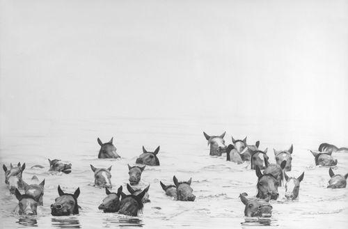 Pony swim marissa textor