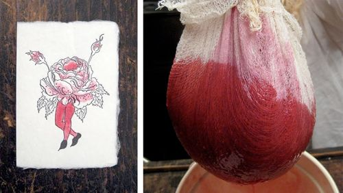 Cranberry dye by Britte Brown
