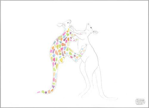 Kangaroos.in.color